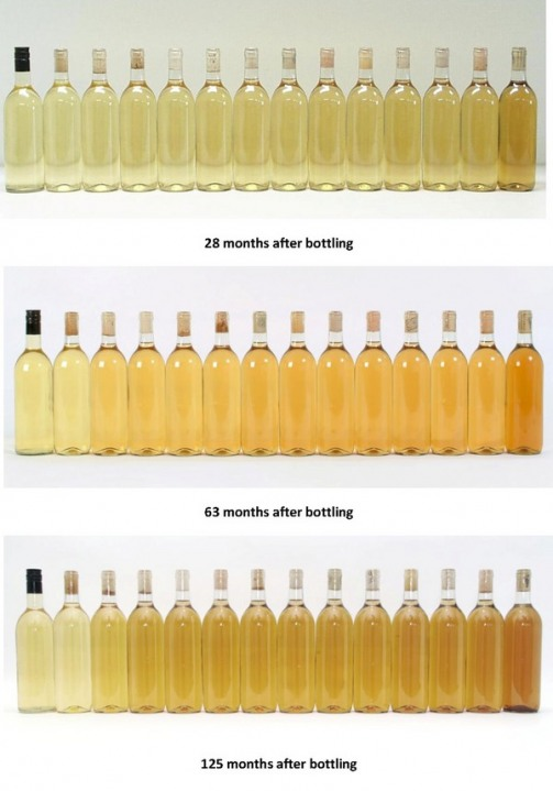 To Screw(cap) or Not to Screw(cap), That is the Question