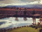Wine Country in the Winter