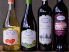 New to Ponte, New to Wine