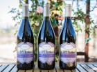 Syrah Vertical Tasting This Sunday
